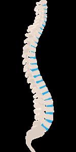 טיפולי דיקור לכאבי גב